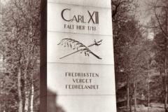 Karl XIIs støtte