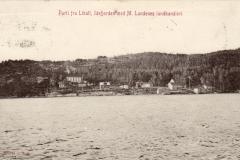 Liholt
